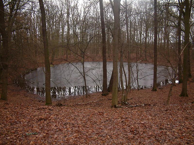 Morasko adlı göktaşının açmış olduğu krater