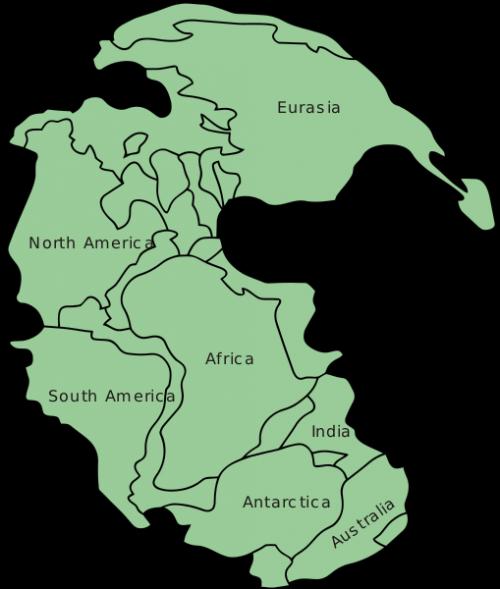 Tek Kıta: Pangea