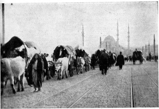 1912'de Birinci Balkan Savaşı sırasında Balkanlardan göçen muhacirler