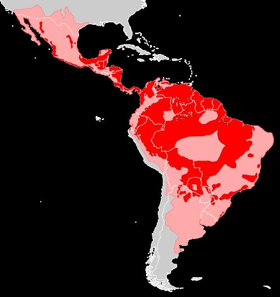 Jaguarın, günümüzdeki (kırmızı) ve tarihsel yaşam aralığı (pembe)