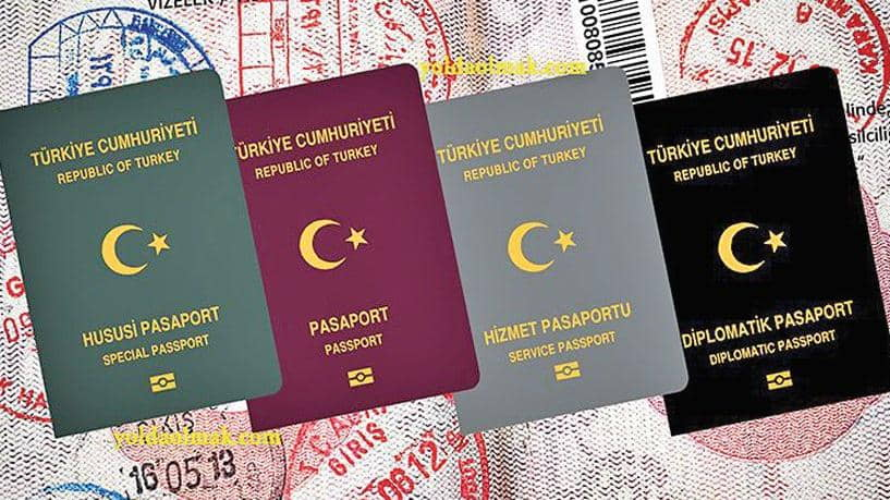 Renkli pasaportta kontrol dönemi